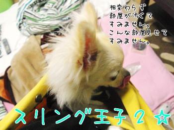 12_20100703214858.jpg