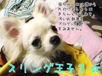 13_20100703214857.jpg