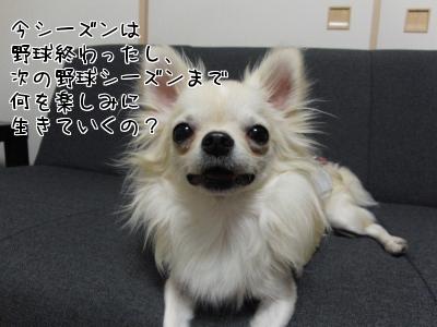 GRWcU.jpg