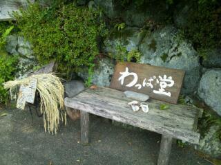 20121021_161008.jpg