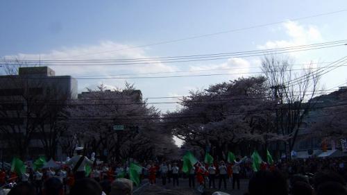 2010年4月3日 056
