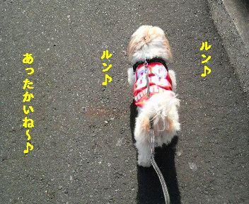 2010032014420000.jpg