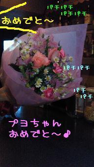 NEC_0795.jpg