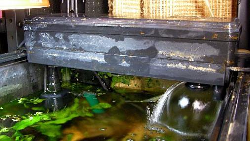 水作ブリッジS 2012-06-29 (5)