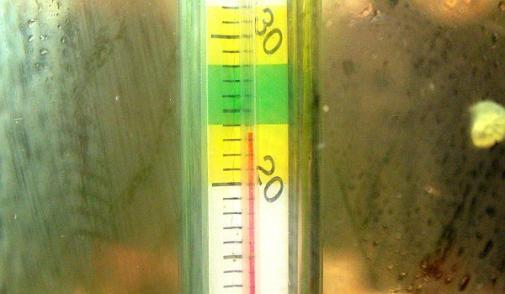 水温降下実験 2012-07-31 (2)