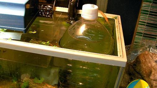 水温降下実験 2012-07-31
