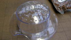 水作メダカ鉢 (23)