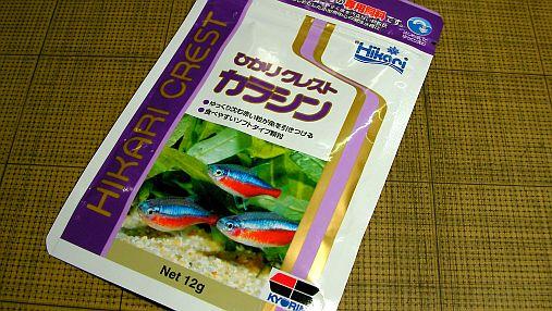 ヒカリ カラシン  2013-02-08 (1)