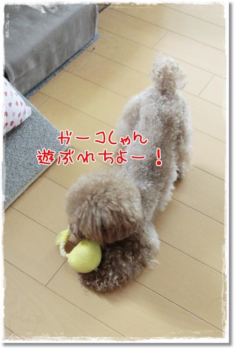 001_20110918104451.jpg