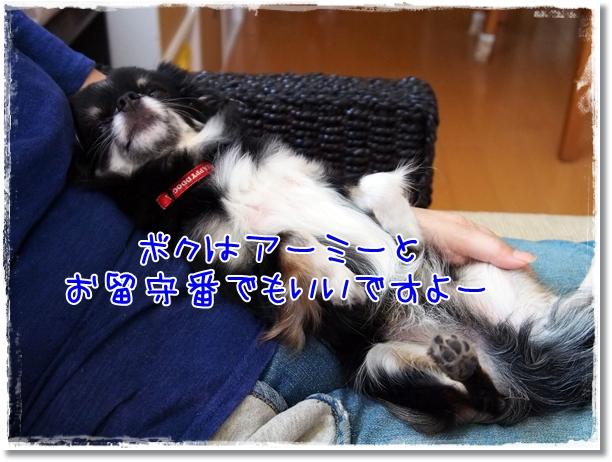 001_20120821203239.jpg