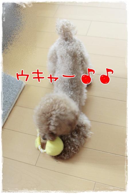 002_20110918104451.jpg