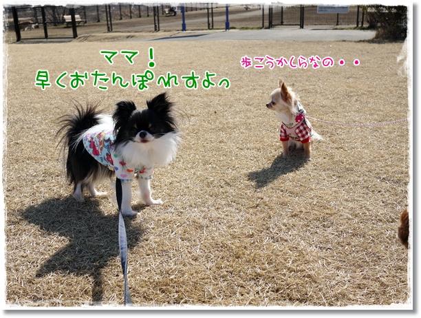 004_20120223113449.jpg