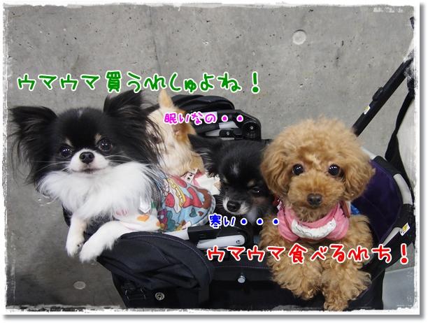 004_20121225214604.jpg