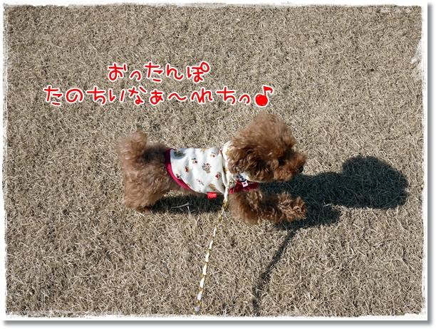 006_20120223113449.jpg