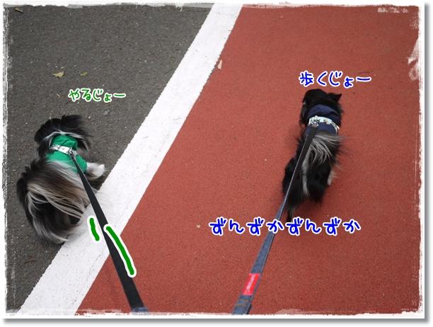 007_20120519085218.jpg