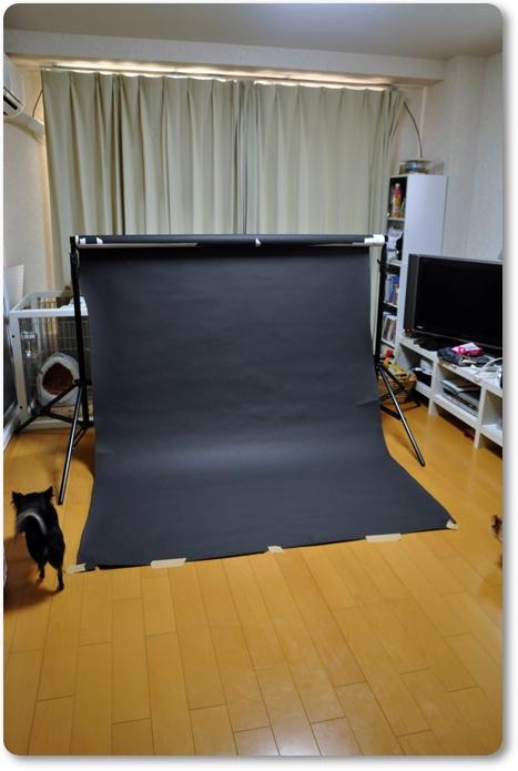 010_20101007211842.jpg