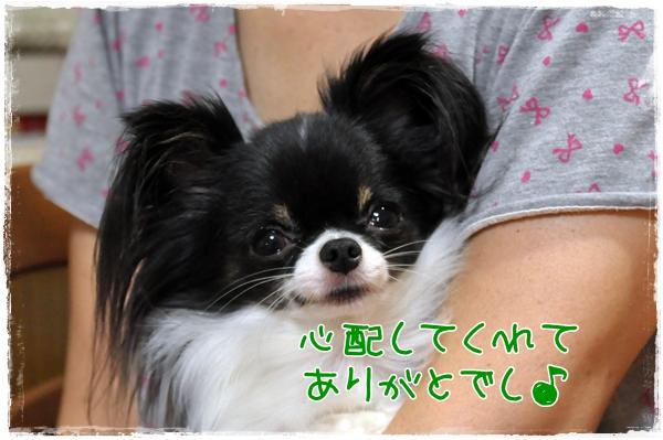 020_20100828211809.jpg