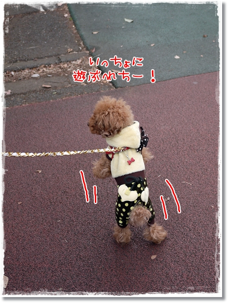 028_20120205222117.jpg