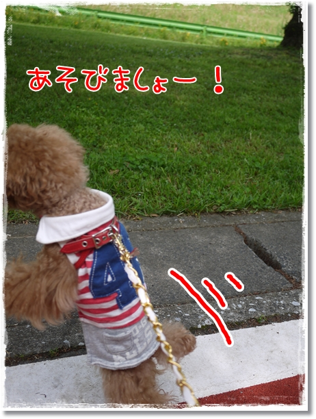 031_20120512083509.jpg