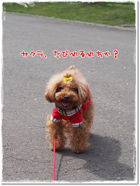037_20130323210506.jpg