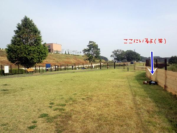074_20100912174923.jpg