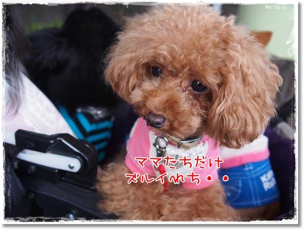 076_20121008191240.jpg