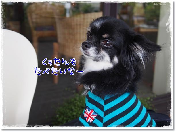 091_20121008191240.jpg