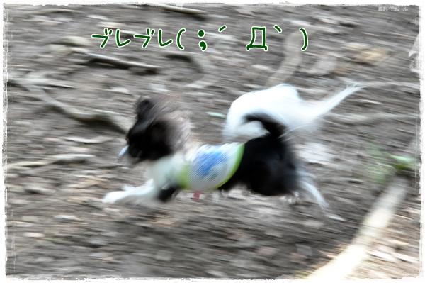 097_20100817172221.jpg