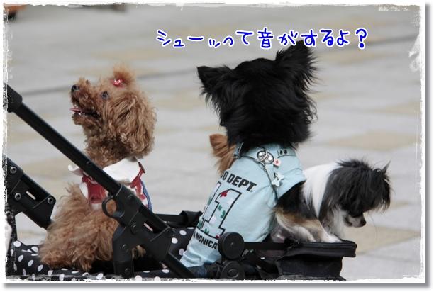 505_20120711201026.jpg