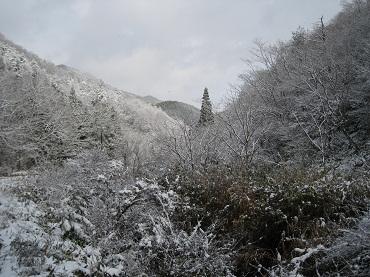 23.12.16 鎌峰山