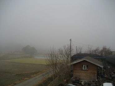 23.12.31 霧