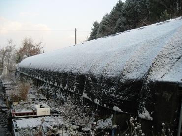 24.1.4 雪のハウス
