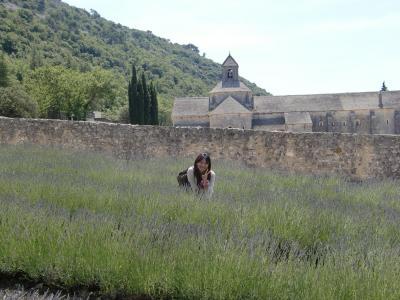 visite en provence2