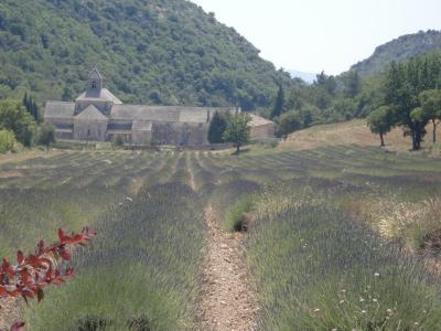 visite en provence4