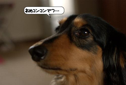 20120504_133807.jpg