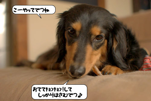 20120504_134652.jpg