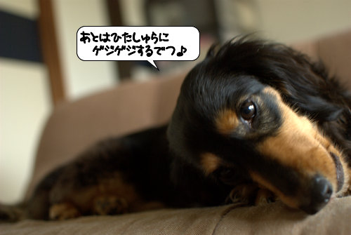 20120504_134847.jpg