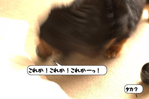 20120510_133015.jpg