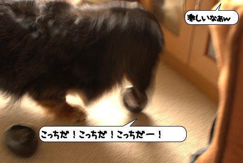 20120510_133445.jpg