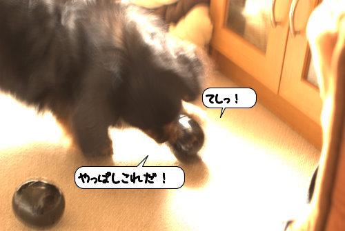 20120510_133706.jpg