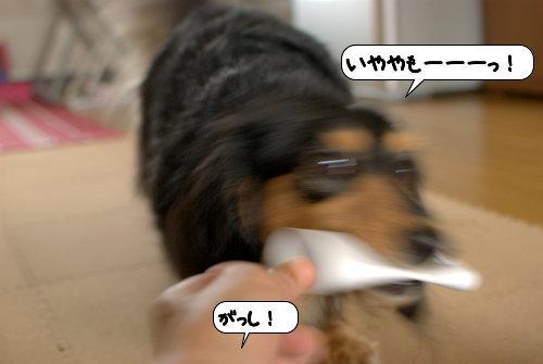 20120713_133807.jpg
