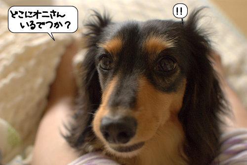 20120714_134051.jpg