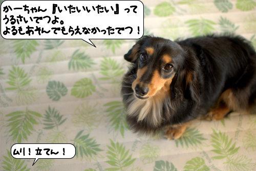 20120912_134522.jpg