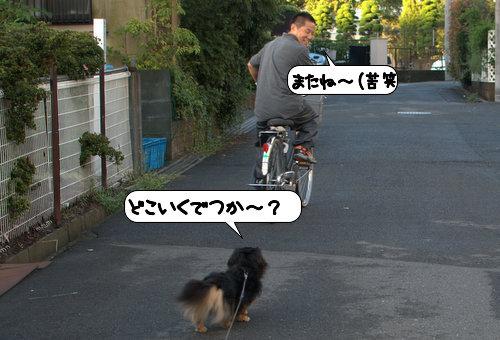 20120924_131806.jpg