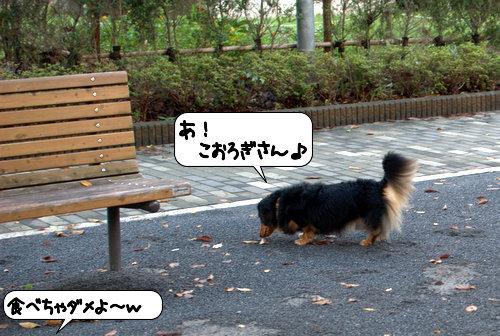 20120924_131936.jpg