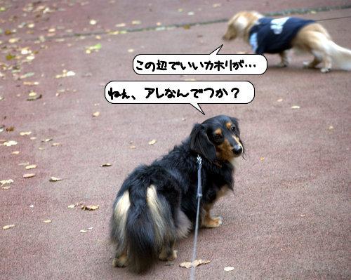 20121010_131107.jpg