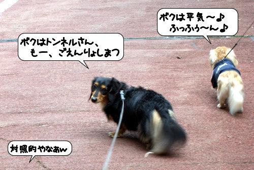 20121010_133007.jpg