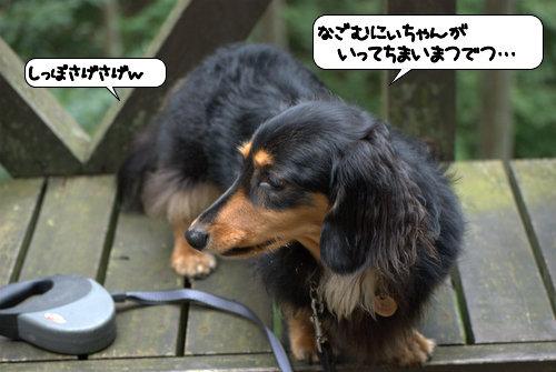 20121013_142801.jpg