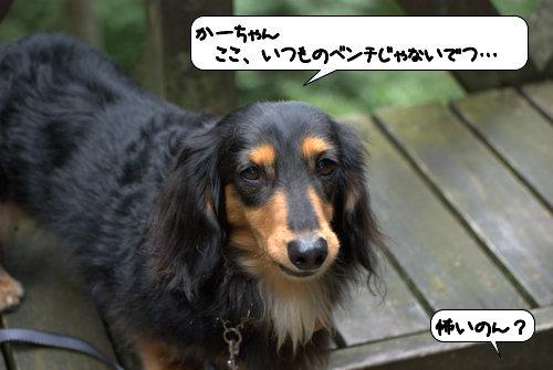 20121013_143058.jpg