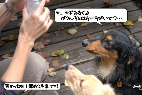 20121013_144425.jpg
